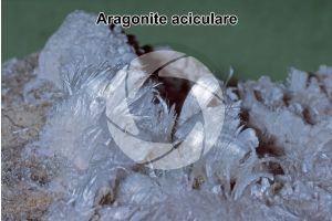 Aragonite aciculare