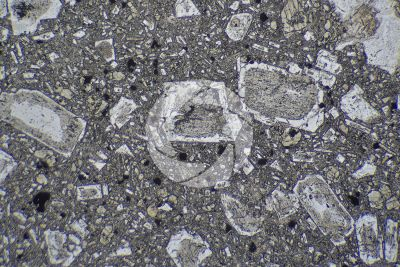 Andesite. Indonesia. Thin section in plane polarized light. 32X