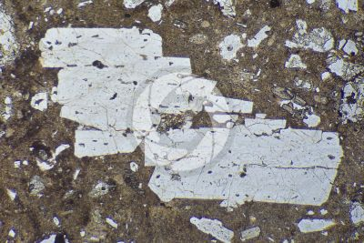 Lava with Cordierite. Lipari. Aeolian Islands. Sicily. Italy. Thin section in plane polarized light. 32X