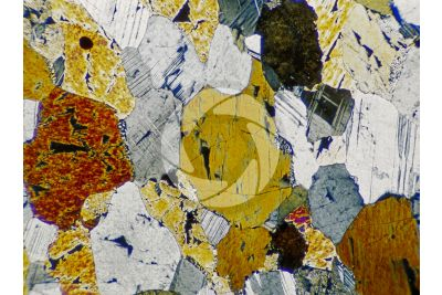 Diorite. Thin section in cross polarized light. 32X