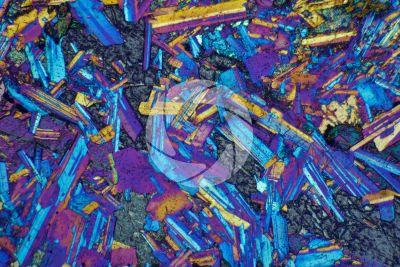 Gabbro. Siberia. Thin section in cross polarized light with lambda filter. 32X