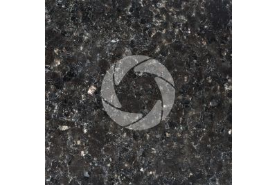 Star Galaxy Granite. Andhra Pradesh. India. Polished section. 1X
