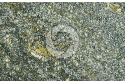 Verde Dorato Granite. Piedmont. Italy. Polished section