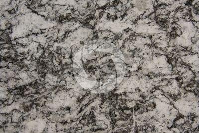 Granito Serizzo Monterosa. Piemonte. Italia. Sezione lucida