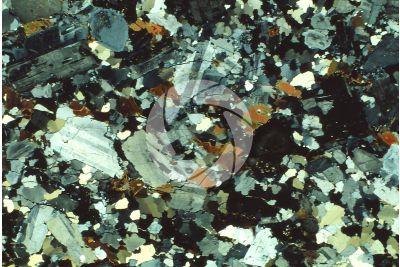 Granito Grigio. Sezione sottile in luce polarizzata a Nicol incrociati. 32X