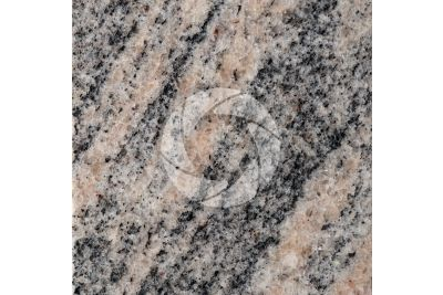Juparana Colombo Granite. Tamil Nadu. India. Polished section. 1X