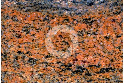 Multicolour Granite. Polished section. 2X
