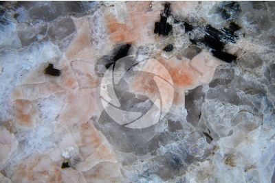 Rosa Baveno Granite. Piedmont. Italy. Polished section. 7X