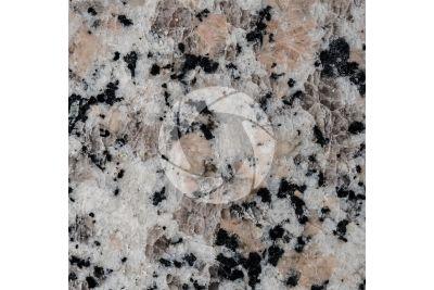 Granito Rosa Beta. Monte Limbara. Sardegna. Italia. Sezione lucida. 1X