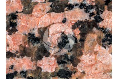 Granito Rosa Sardo. Sardegna. Italia. Sezione lucida. 1X