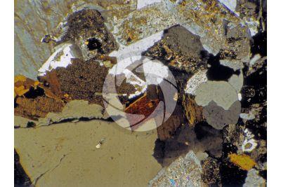 Granito Rosa Sardo. Sardegna. Italia. Sezione sottile in luce polarizzata a Nicol incrociati. 32X
