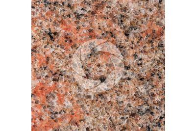 Multicolor Red Granite. Karnataka. India. Polished section. 1X