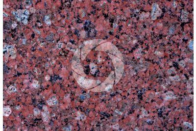 Guazubira Granite. Uruguay. Polished section. 2X