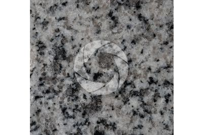 Bianco Cristal Granite. Madrid. Spain. Polished section. 1X