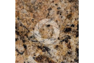 Giallo Veneziano Granite. Brazil. Polished section. 1X