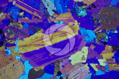 Monzonite. Thin section in cross polarized light with lambda filter. 32X