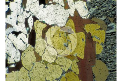 Pegmatite. Thin section in cross polarized light. 32X
