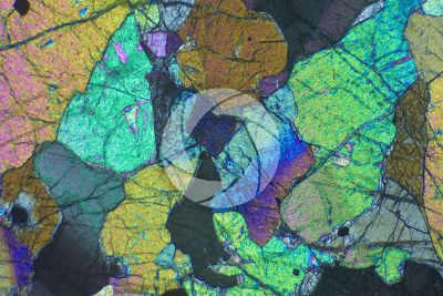 Peridotite. Finero. Piedmont. Italy. Thin section in cross polarized light. 32X