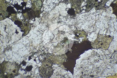 Syenite. Thin section in plane polarized light. 32X