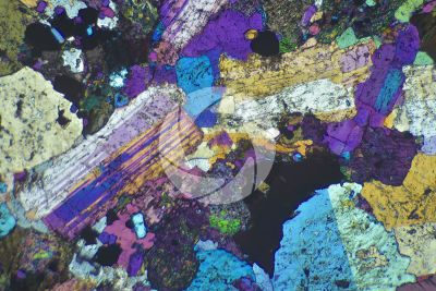 Syenite. Thin section in cross polarized light with lambda filter. 32X