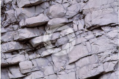 Limestone. Domaro. Lombardy. Italy