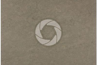 Gris Fleury Limestone. France. Polished section