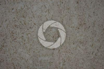 Perlato Miramare Limestone. Portugal. Polished section