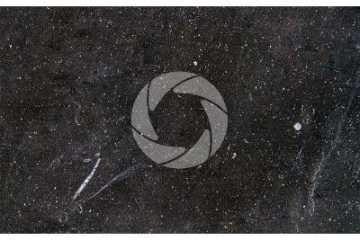 Marmo New Belgium Black. Belgio. Sezione lucida