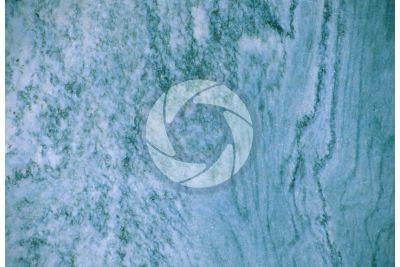 Marmo Verde Cipollino. Toscana. Italia. Sezione lucida