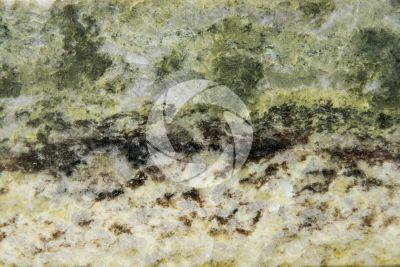 Marmo Connemarble Green. Derryclare. Irlanda. Sezione lucida