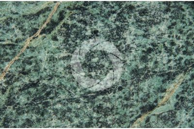 Green Velvet Marble. China. Polished section