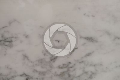Calacatta Grigio Marble. Italy. Polished section