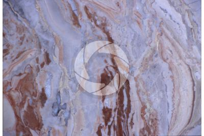 Arabescato Orobico Marble. Bergamo. Lombardy. Italy. Polished section