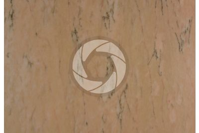 Rosa Portogallo Marble. Portugal. Polished section
