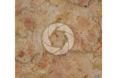 Giallo Reale Rosato Marble. Selva di Progno. Veneto. Italy. Polished section. 1X
