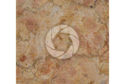 Marmo Giallo Reale Rosato. Selva di Progno. Veneto. Italia. Sezione lucida. 1X