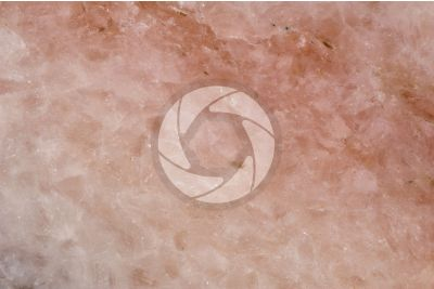 Pink Marble. Austria. Polished section. 2X