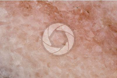 Marmo Rosa. Austria. Sezione lucida. 2X