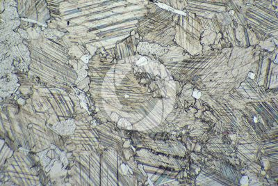 Pink Marble. Austria. Thin section in plane polarized light. 32X