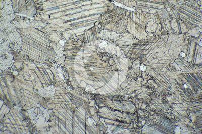 Marmo Rosa. Austria. Sezione sottile in luce polarizzata. 32X