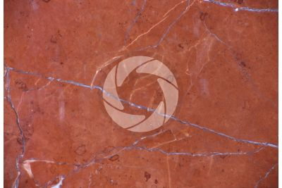 Rosso Collemandina Marble. Tuscany. Italy. Polished section