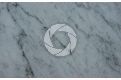 Bianco Carrara Marble. Carrara. Tuscany. Italy. Polished section