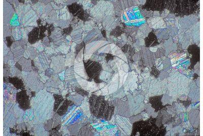 Bianco Carrara Marble. Carrara. Tuscany. Italy. Thin section in cross polarized light. 64X
