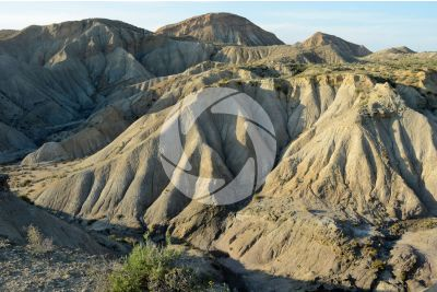 Badland. Tabernas Desert. Andalusia. Spain