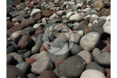 Shingle beach. Lingua. Salina. Aeolian Islands. Sicily. Italy