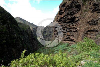 Barranco del Infierno. Tenerife. Canary Islands. Spain