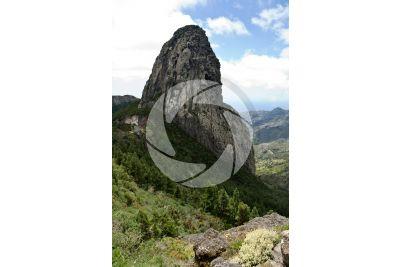 Neck. Roque de Agando. La Gomera. Isole Canarie. Spagna