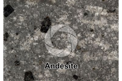 Andesite. Costa Rica. Polished section. 1X