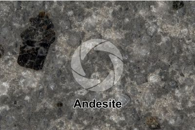 Andesite. Costa Rica. Polished section. 2X