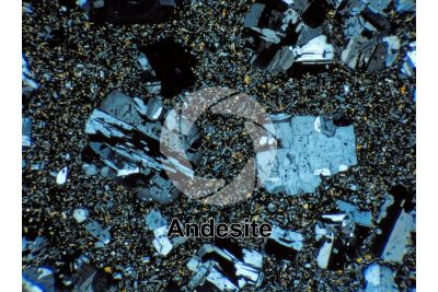 Andesite. Costa Rica. Thin section in plane polarized light. 32X